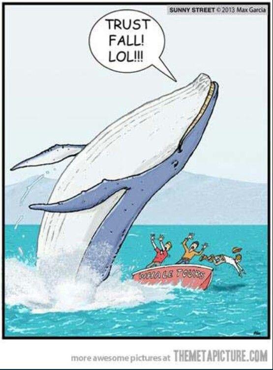 Teambuilding Funny Commercials Laugh Funny