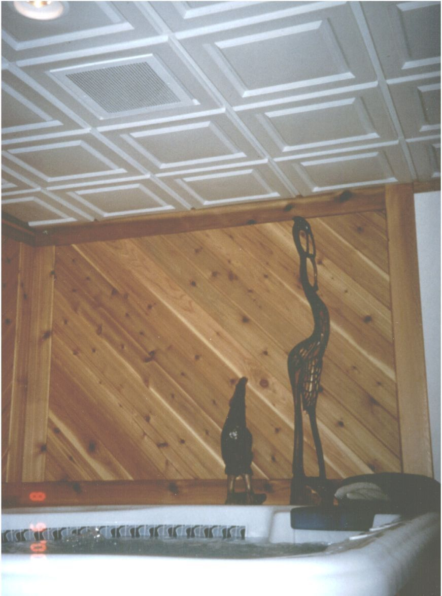 Raised Panel Ceiling Tiles Blog Avie