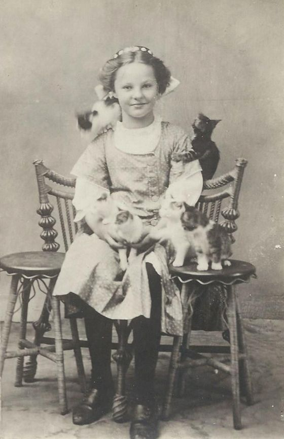 Vintage Cats and People: Photo