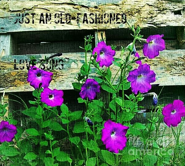 Pin by Pamela Ann on ARTography My Art, Photography, and