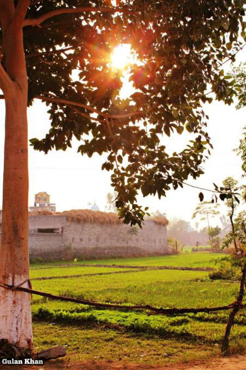 Pakistan Village Of Punjab Pakistan In 2020 Village Photography Pakistan Culture Background For Photography