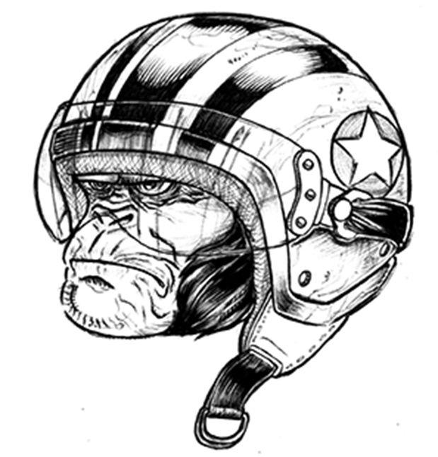 sketch chimp