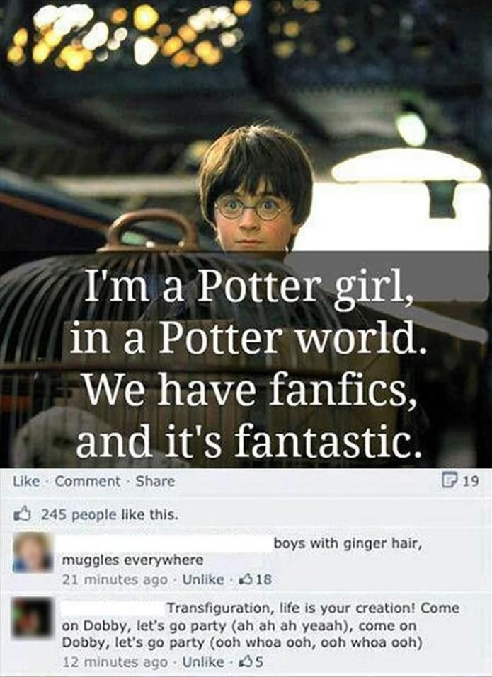 Pin By Karmya Bronson On Wonders Of The Wizarding World Harry Potter Song Harry Potter Universal Harry Potter Fan