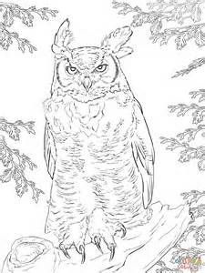 Realistic Bird Coloring Pages Bing Images Owl Coloring Pages