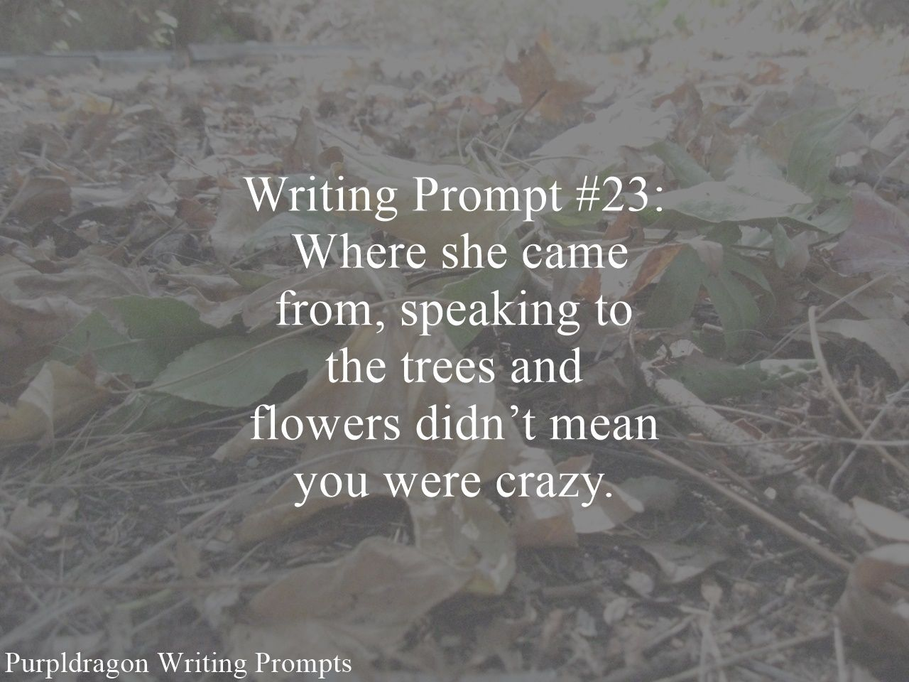 Writing Prompt #23: Where she came from, speaking to the trees and flowers didn't mean you were crazy.