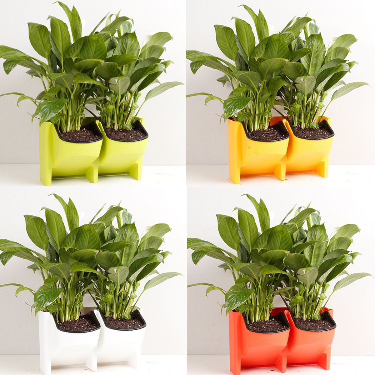 2-Pocket Vertical Wall Planter Self Watering Hanging Flower Pot ...