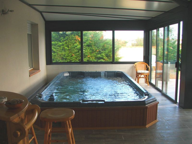 spa de nage int rieur recherche google spa de nage pinterest spa garden pool and indoor. Black Bedroom Furniture Sets. Home Design Ideas