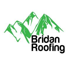 Bridan Roofing Loveland 970 825 1175 Ww Bridanroofingloveland Com Roofing San San Antonio