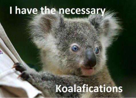aahhhhhh koalaaaa! :D