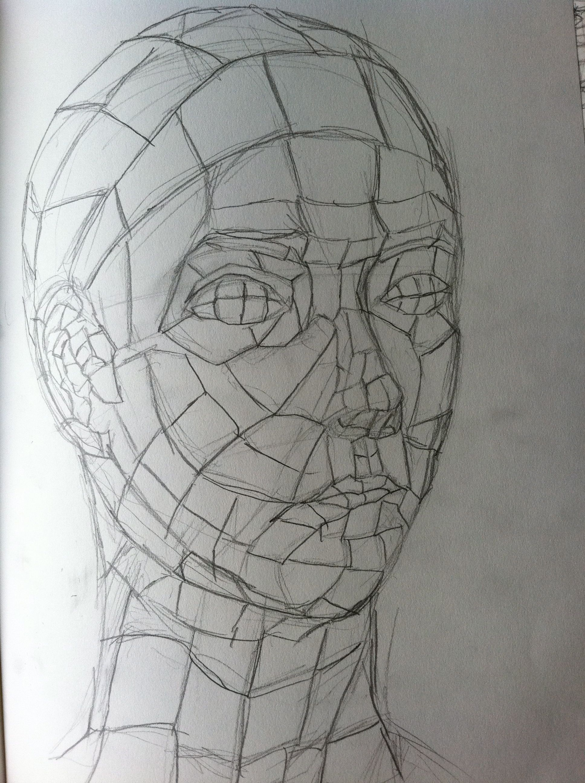 Contour Line Drawing Middle School : Cross contour lines contours low poly and portraits