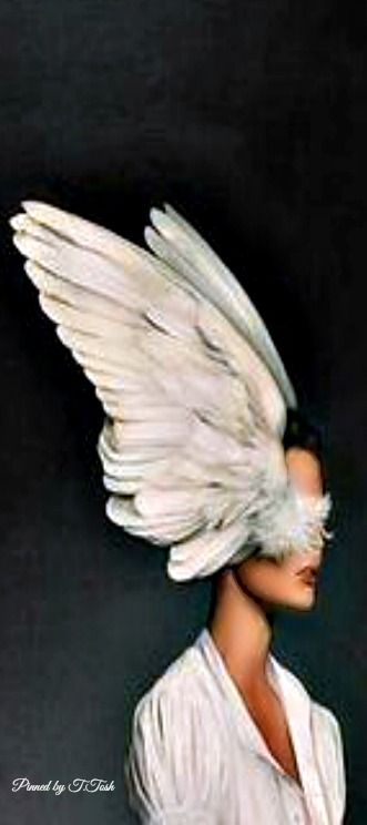 by Amy Judd