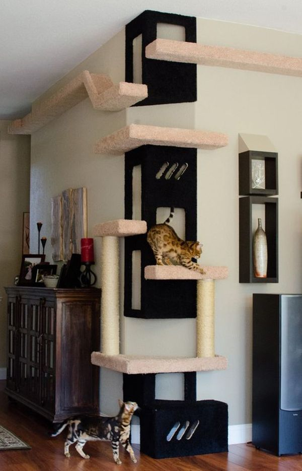 25 Indoor Cat Tree Ideas For Play And Relax Cat Room Diy Diy Cat Tree Cat Room