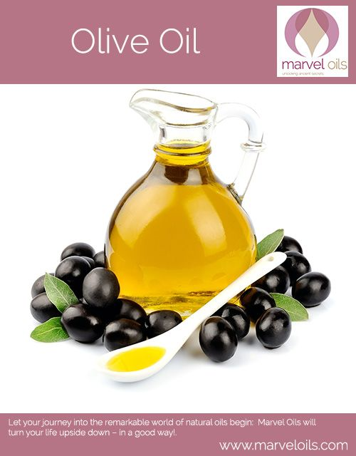 Olive Oil The Olive Is A Symbol Of Peace And Olive Trees Are