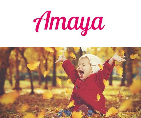 Amaya Bedeutung