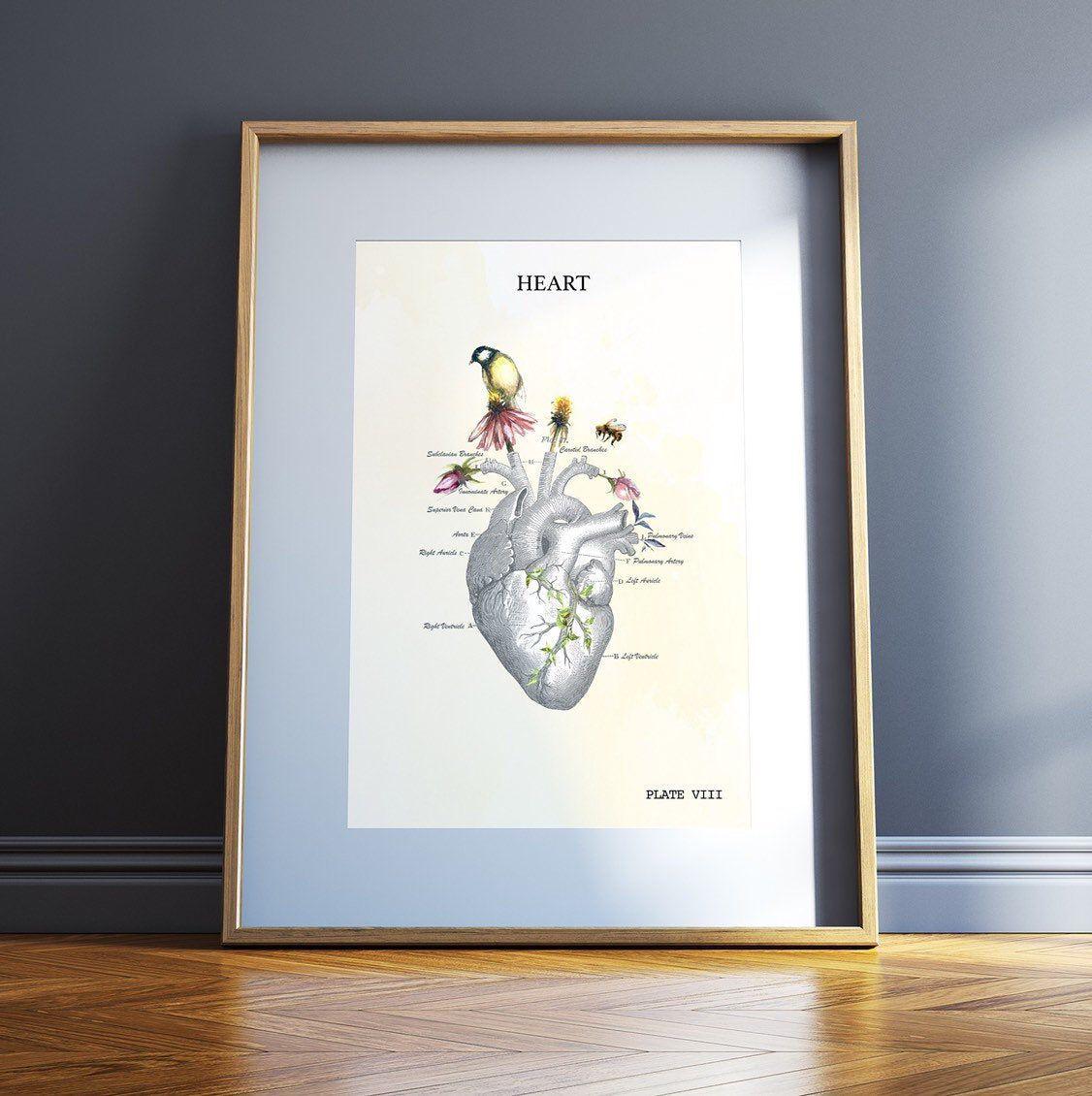 Graduation Gift for Nurse Medical Assistant Gifts Anatomical Heart Art Print Medical Student Graduation Gift for EKG technician Cardiology #medicalstudents