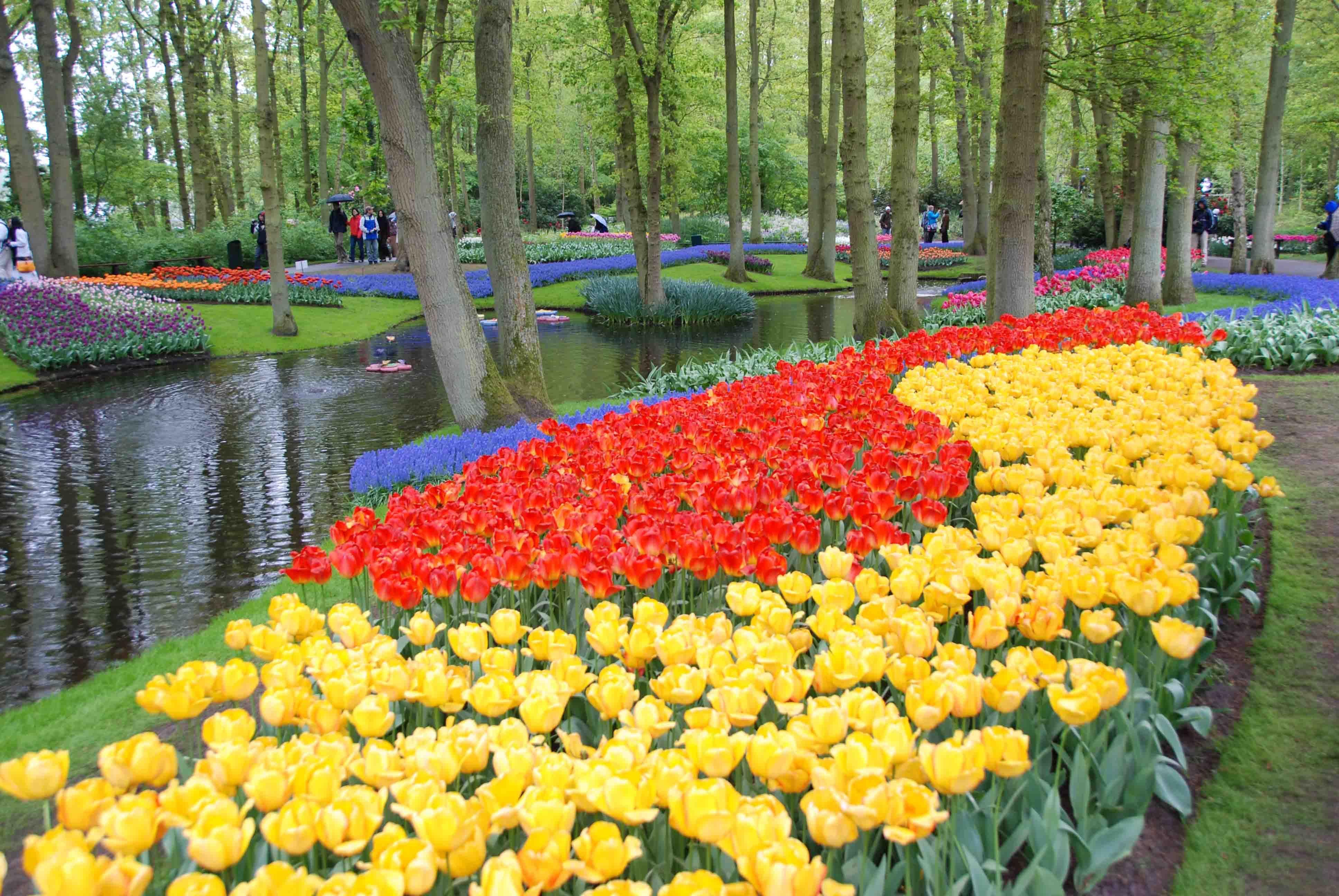 Urban Parks, Lisse, Netherlands, Keukenhof flowers near