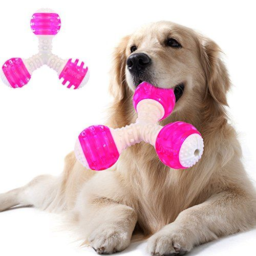 Dog Owners Listen To These Solid Ideas Dog Squeaky Toys Dog