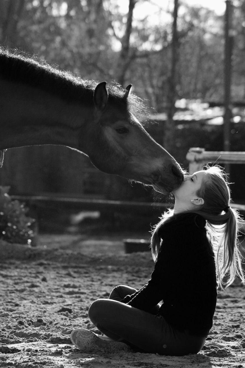 Good Morning Nuzzles Pferde Madchen Fotografie Hubsche Pferde Pferdefotos
