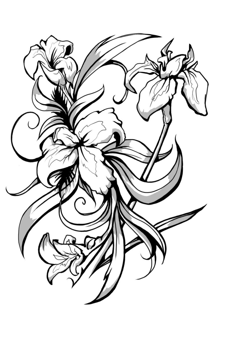Iris Black And White Art By Celestiaward On Deviantart Iris Tattoo Iris Flower Tattoo Iris Flowers