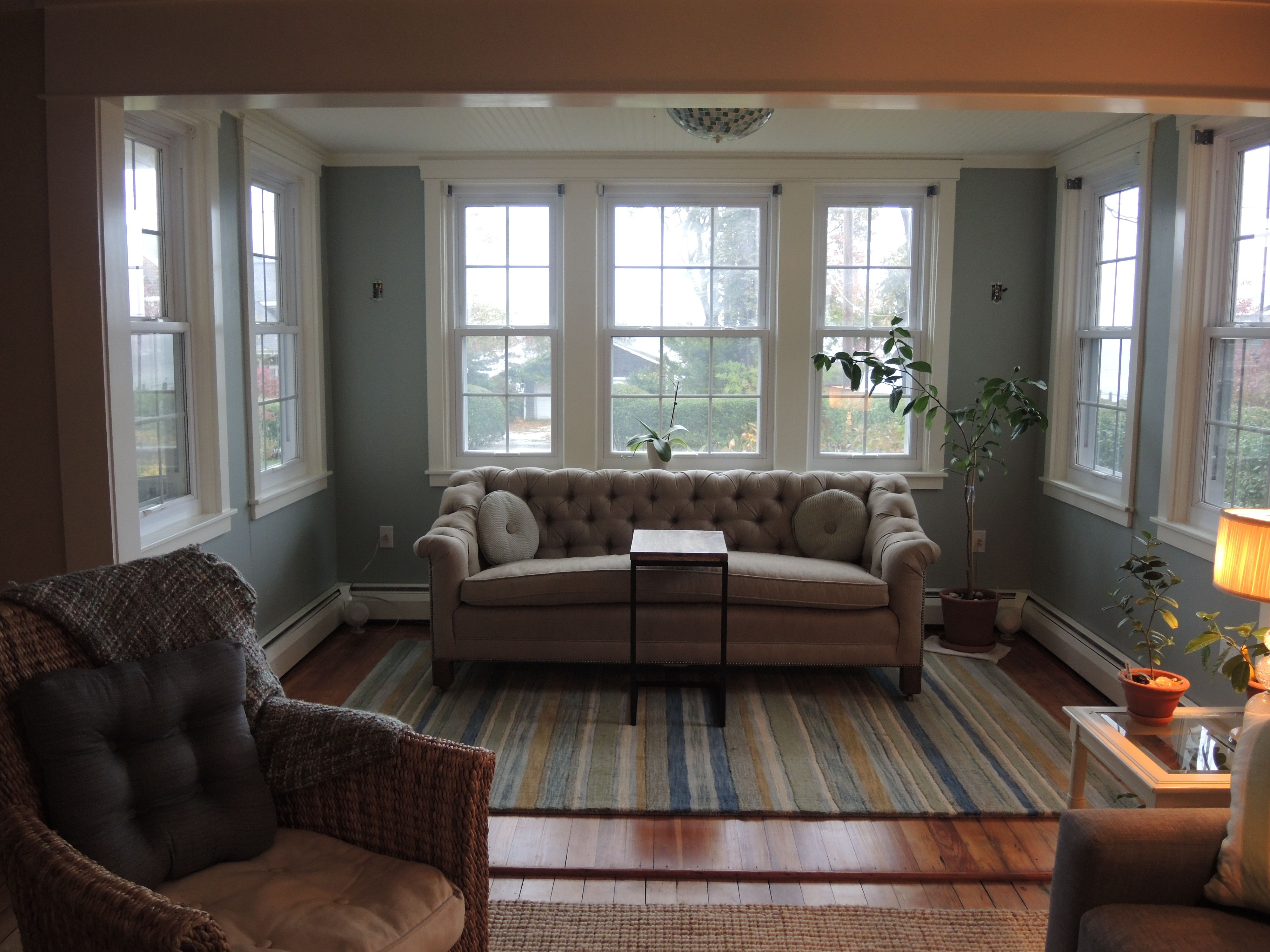 Sunroom Sherwin Williams Silvermist Company C Sheffield Stripe Rug Restored Antique Chesterfield What Nex Home Sherwin Williams Paint Colors Living Room