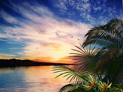 A Natureza E A Coisa Mais Linda E Perfeita Que Deus Criou