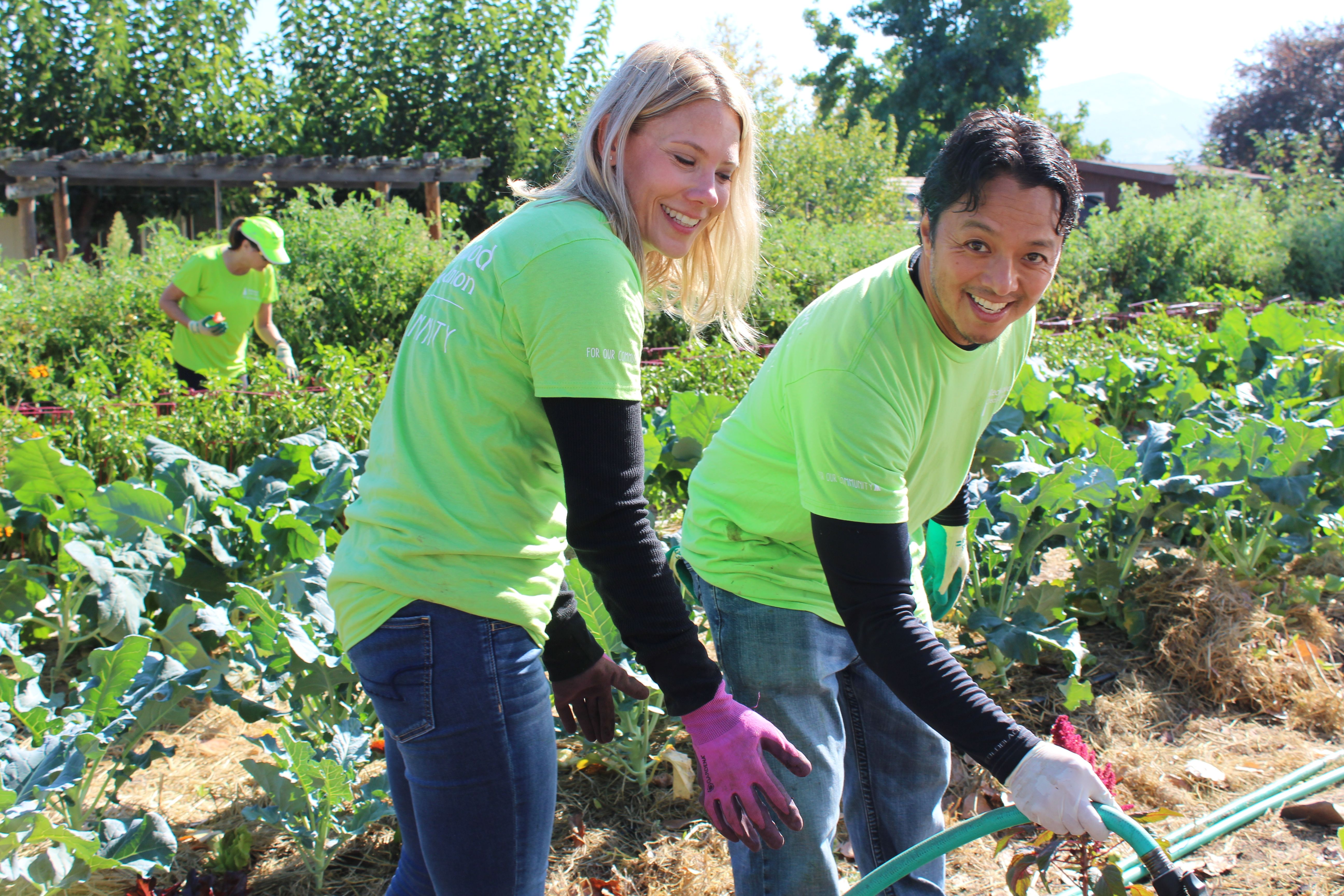 Harvest for the hungry is a nonprofit garden that provides