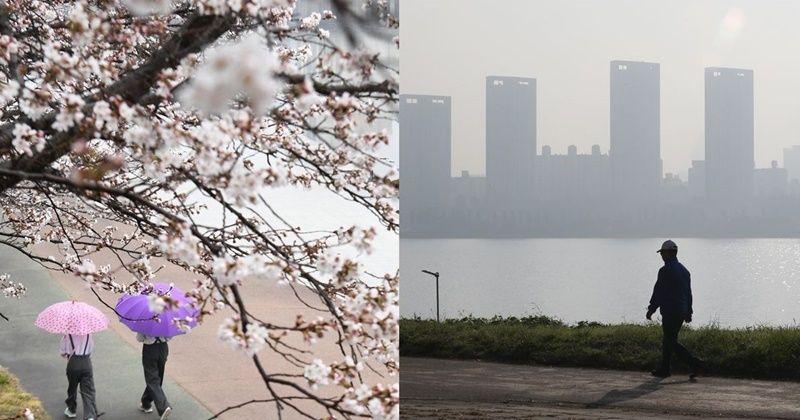 오늘 17일 반가운 봄비 중국 황사 영향 미세먼지 높아 천둥 비 및 중국