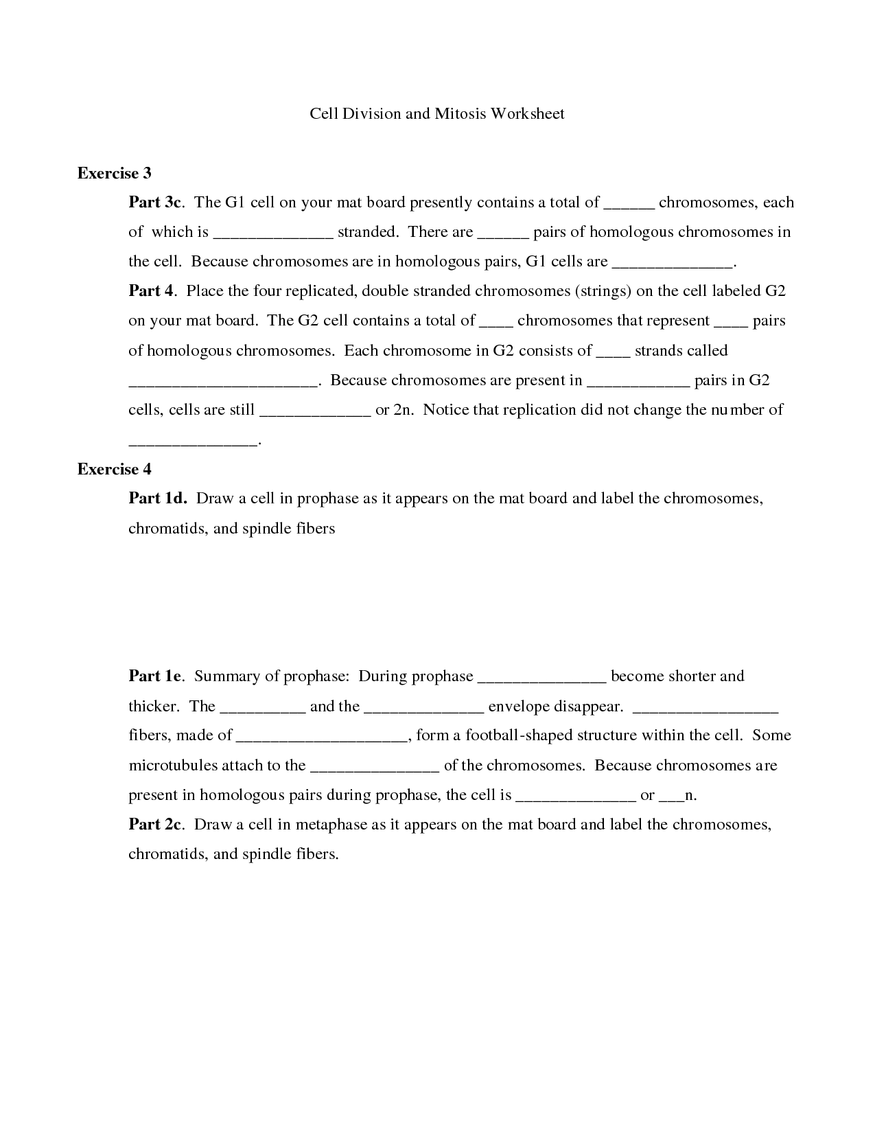 Pictures Cell Division Worksheets - Toribeedesign