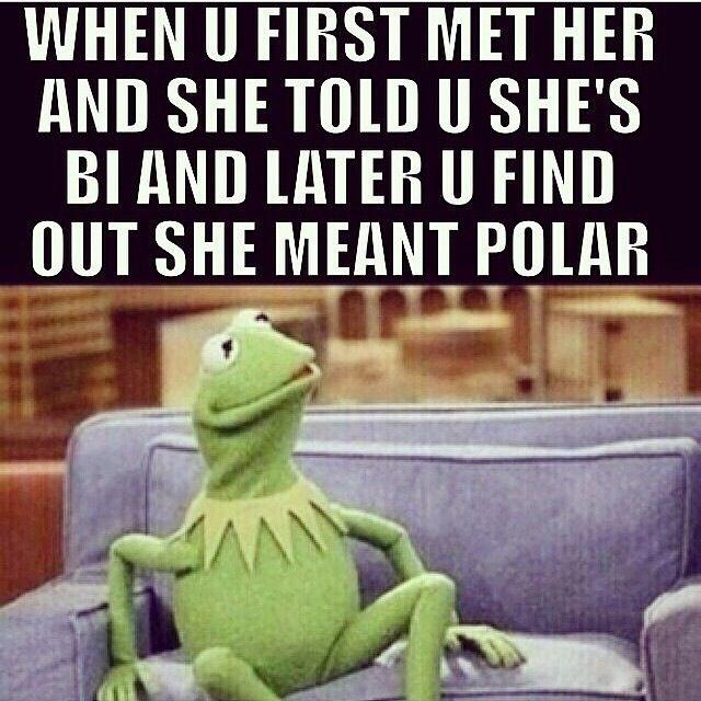 5851557875a4e2d03cd341eeb50dd57f bi bisexual bipolar funny pinterest kermit and memes