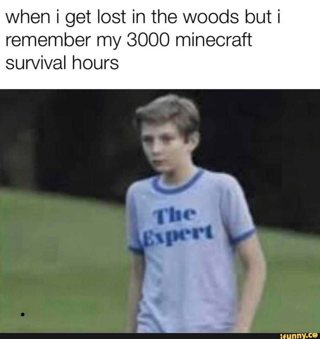 When i get lost in the woods but i remember my 3000 minecraft survival hours – iFunny :)
