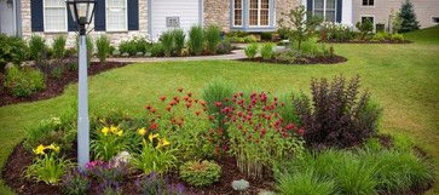 Ideas para decorar jardines del frente   Jardines del frente, Ideas ...