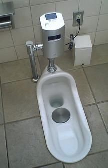 high-tech squat toilet. these are used all over the world