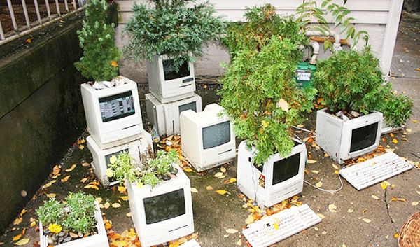 Reuse Your Old Computer To Build A Computer Plant Feeder