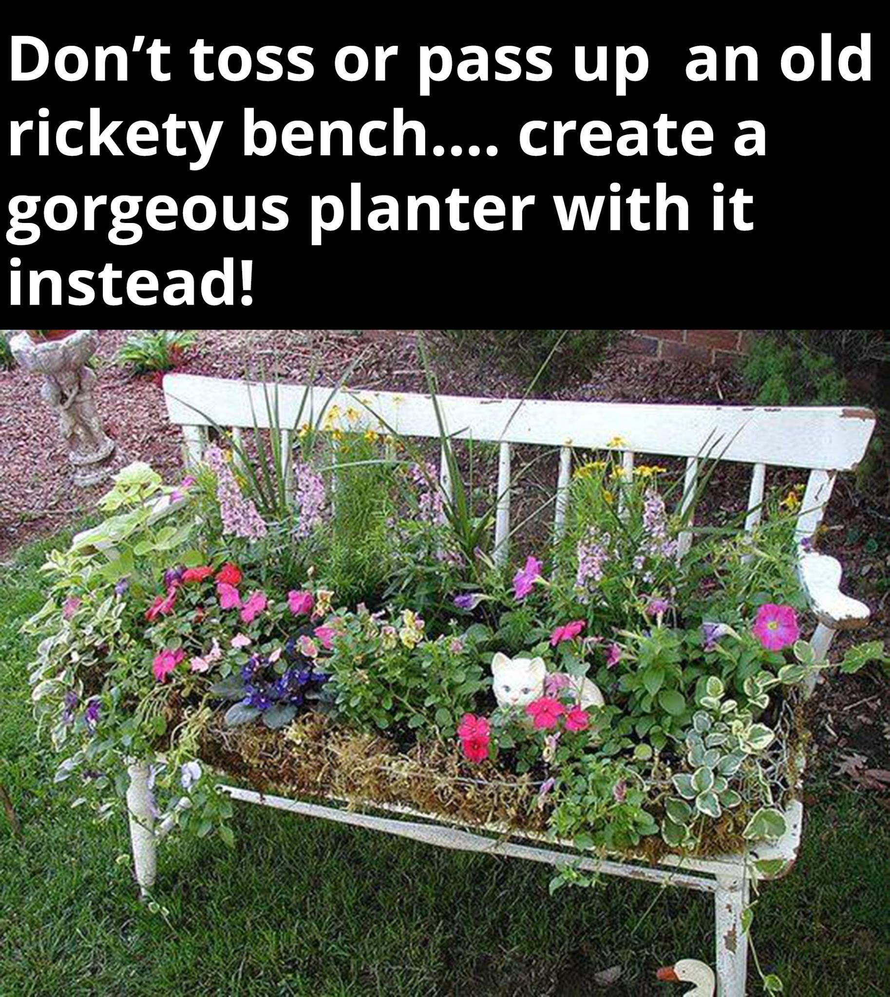 Pin by Holly Smith on Garden, Yard & Outdoor Ideas   Pinterest ...