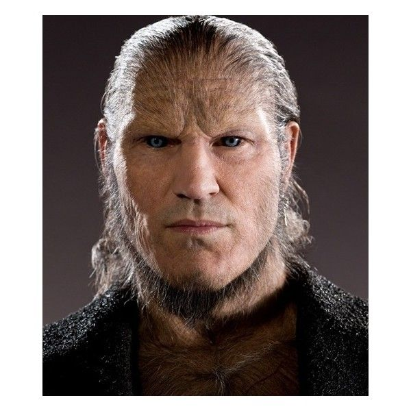 Dave Legeno As Fenrir Greyback Page 2 Chamber Of Secrets Harry Potter Characters Harry Potter Films Harry Potter