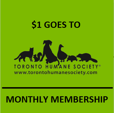 Ths Monthly Membership Monthly Membership How To Raise Money