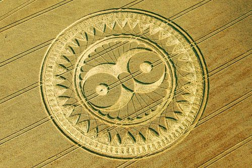 Wise Owl Crop-Yantra Patch