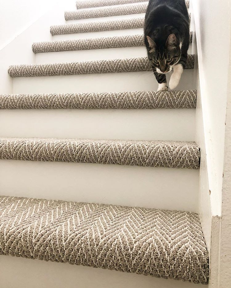 Noting The 2 Toned Color And Pattern Of Carpet In 2020 Carpet Staircase Stairway Carpet Carpet Stairs