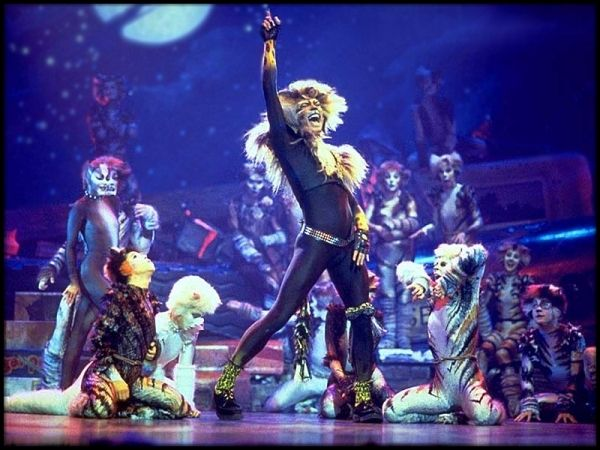 *The Rum Tum Tugger Is A Curious Cat* CATS The Musical