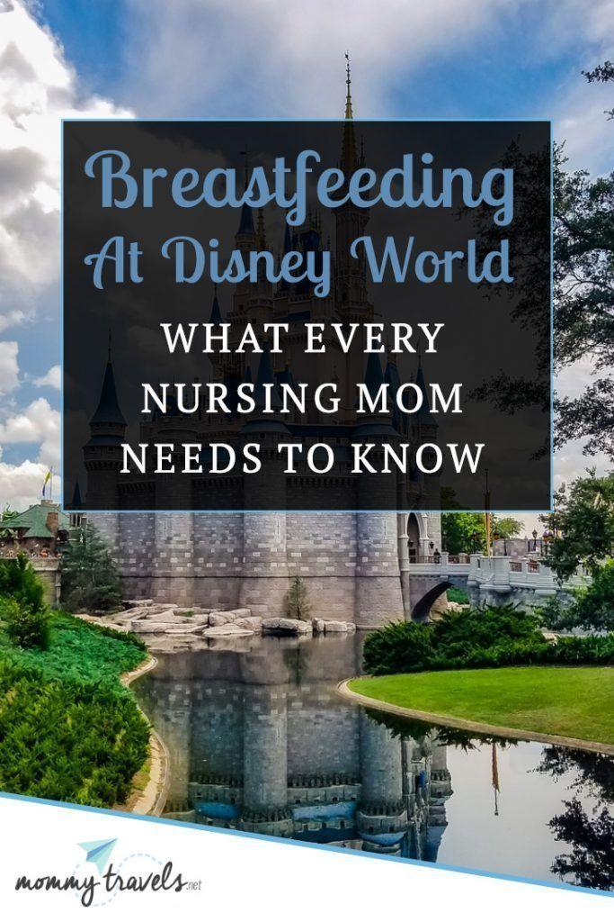 Breastfeeding At Disney World: What Every Nursing Mom