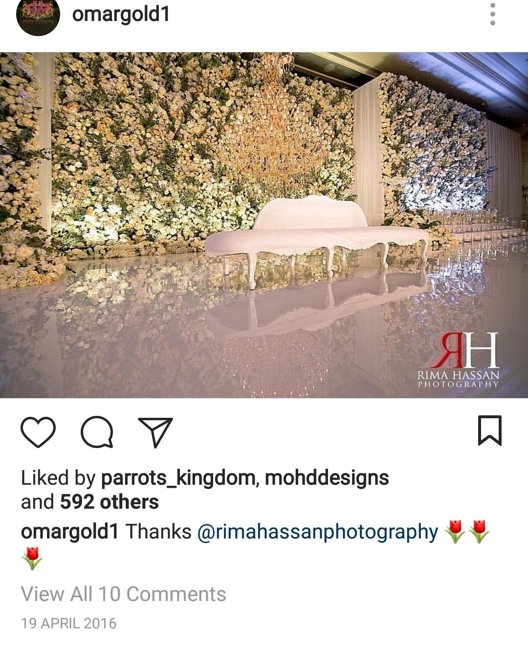 Wedding decorations stage backdrops october 2018 Pin by Zari on Backdrops kosha in   Pinterest  Backdrops