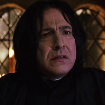 Blog Cz Severus Snape Draco Malfoy Harry Potter Figuren