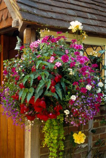 How To Make Unusual Gardens With Flowering Hanging Baskets