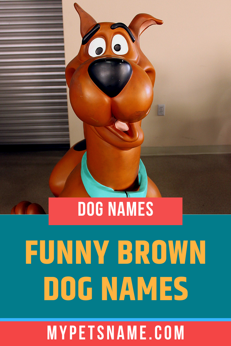 Funny Brown Dog Names Dog Names Brown Dog Names Cute Names For Dogs