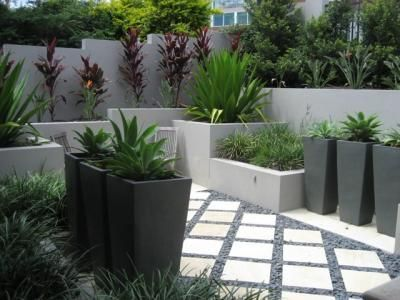 Coorparoo courtyard photo utopia landscape design for Garden design queensland