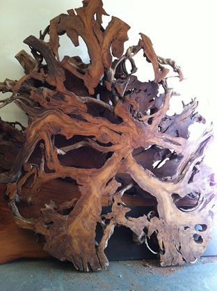 Root Slice As Wall Art Wood Resin Wood Art Wood Lumber