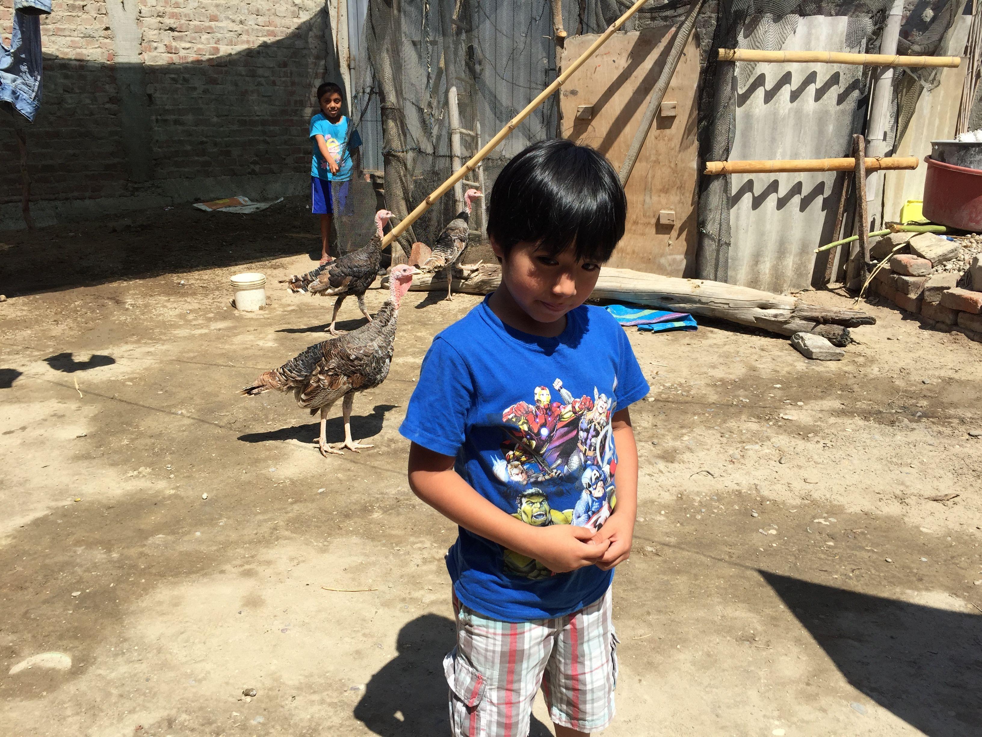 Fernando llegando a la casa de su tía Rosa