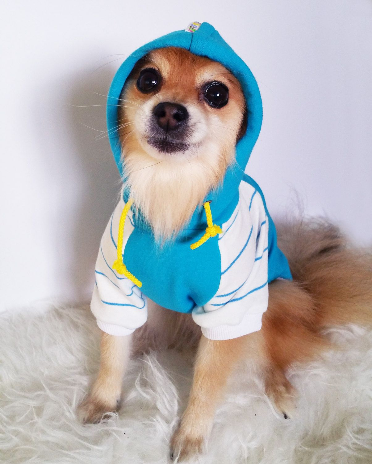 Blue Striped Dog Hoodie Pet Clothes Handmade Dog Clothes Small