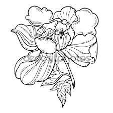 Risultati Immagini Per Cornici Fiori Stilizzati In Bianco E Nero