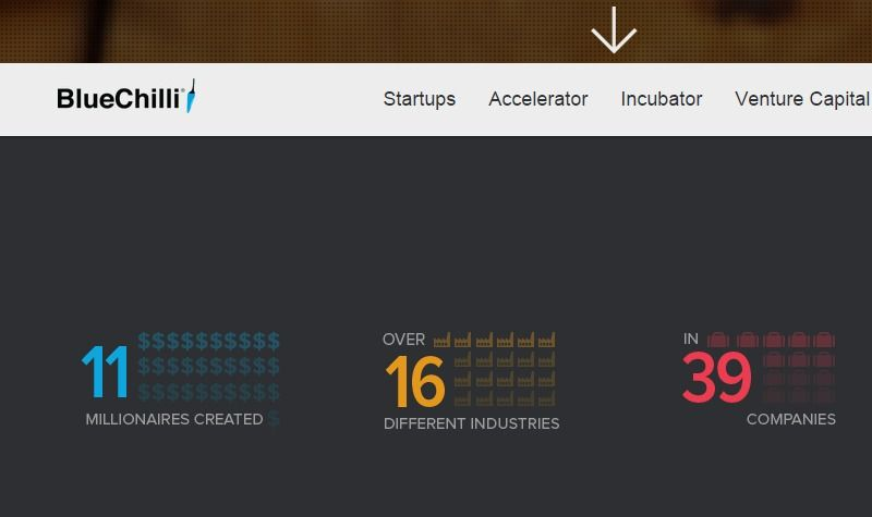 Development and investment in global online tech startups